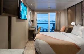Swingers Cruise Jamaica 2023 Aqua Stateroom